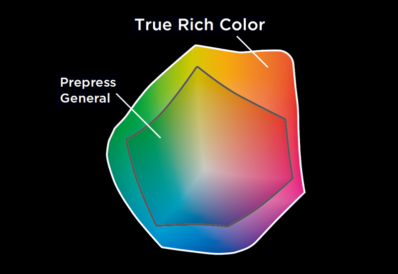 True Rich Color – Farbpalette