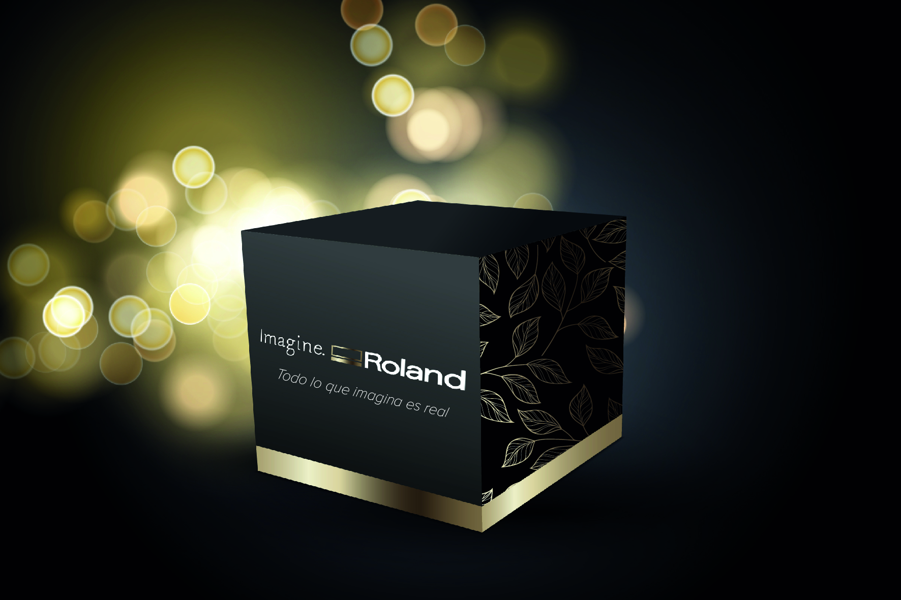 packaging Roland DG